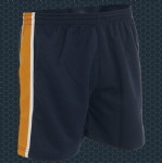 Panelled Sports Short